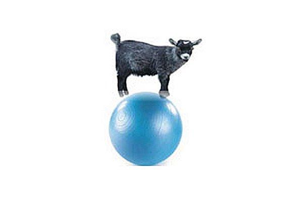 1-kid_on_ball